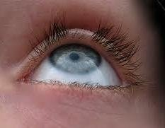 Eyelash Loss - Will they grow back