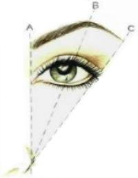 How to Arch Eyebrows – Step, Tips for Perfectly Arched Brows and ...