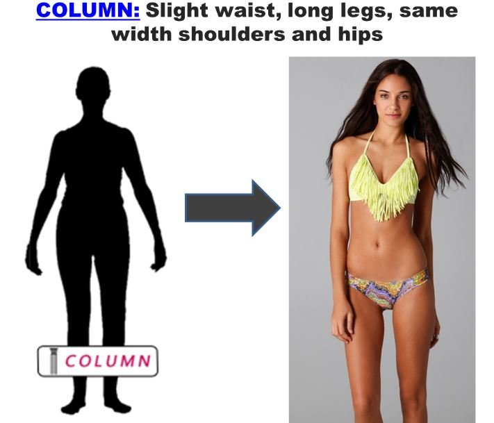 Column Body Shape